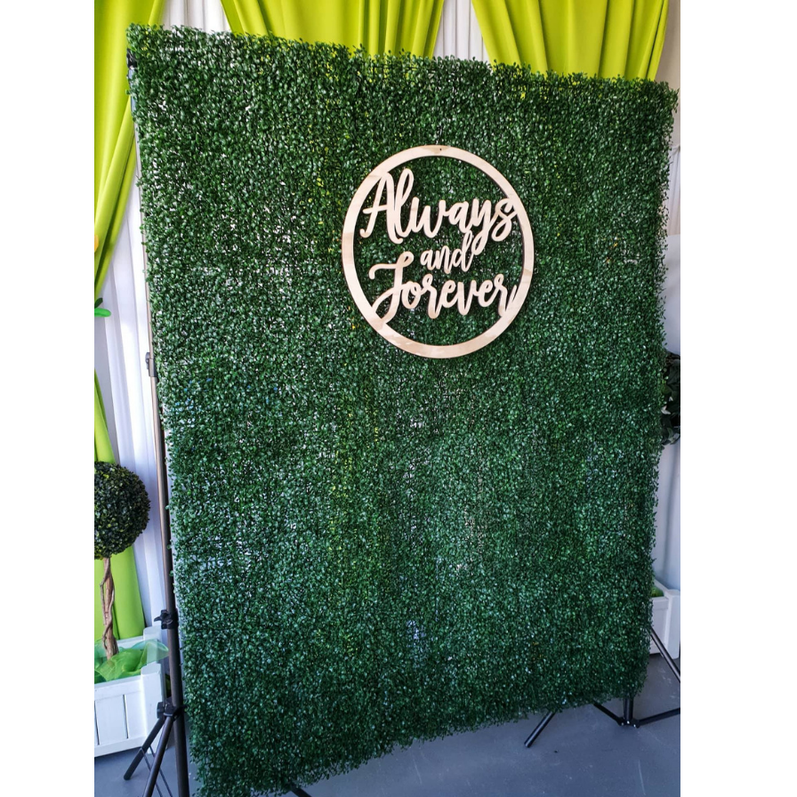 Boxwood Backdrop 896x896